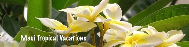 Maui Tropical Vacations Header