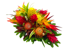 Summer Special Flowers by Maui Floral