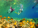 Un Cruise Adventures Maui Tropical Vacations